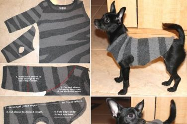 Dog Sweater Skillofking Com